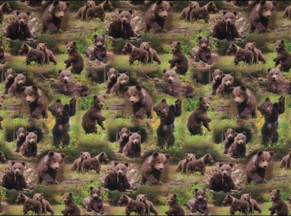 digitale tricot met beren
